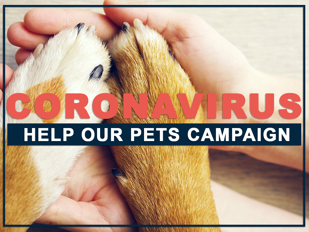 CORONAVIRUS Help Our Pets Campaign