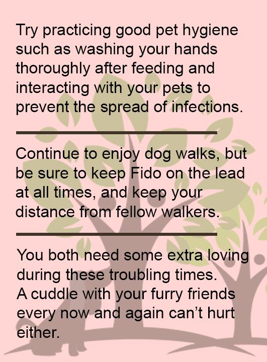 CORONAVIRUS: Help Our Pets Campaign
