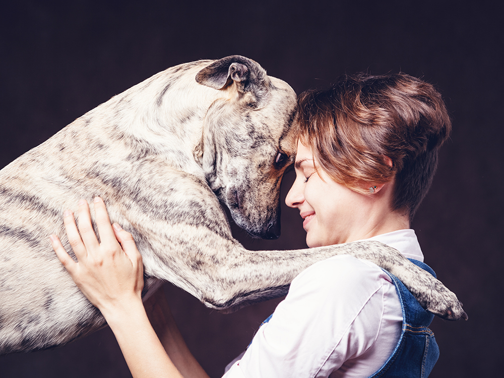 caring-for-dog