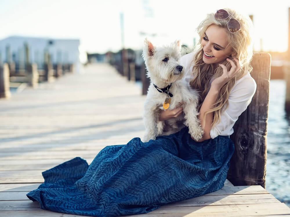 small dog breed myth 7