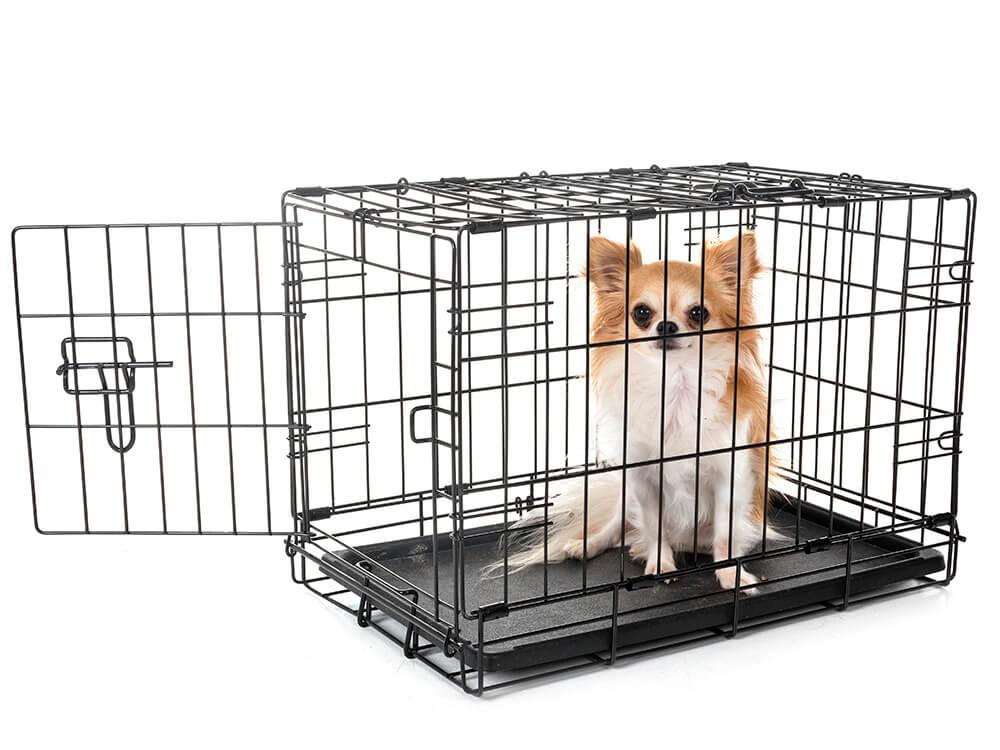 how-big-should-a-do-crate-be