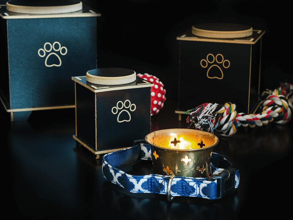 pet-cremation