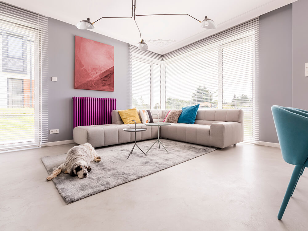 How To Rent A House with Pets -2