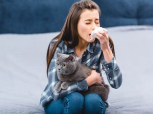Signs and Home Remedies for Pet Allergies