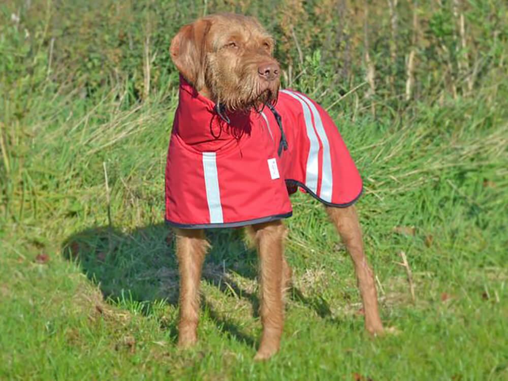 brora waterproof dog coat