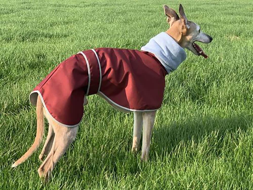 Sighthound Waterproof Coat with Fleece Snood