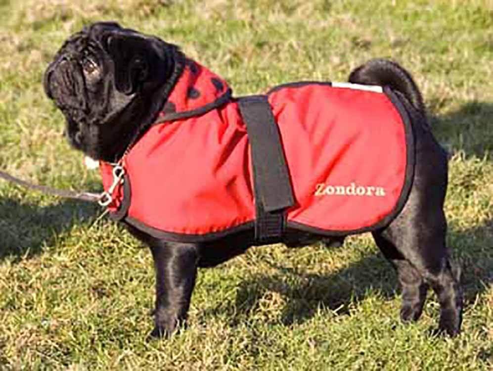 waterproof made to measure dog coat