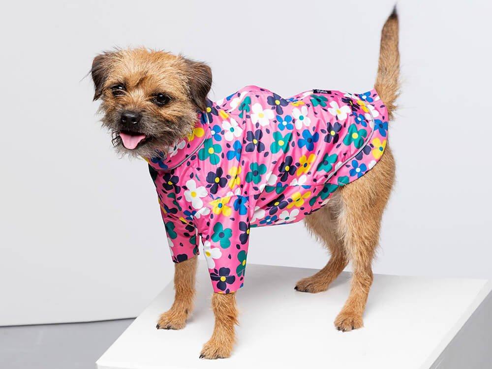 Yapham Dog Raincoat