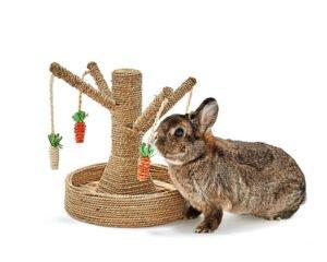 rabbit chew toys 2