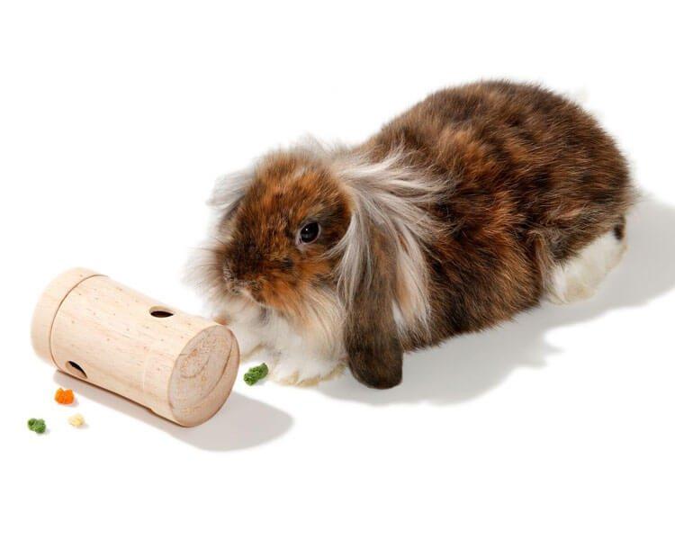 rabbit chew toys 6