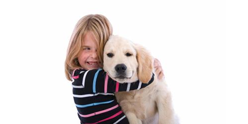 child friendly dog