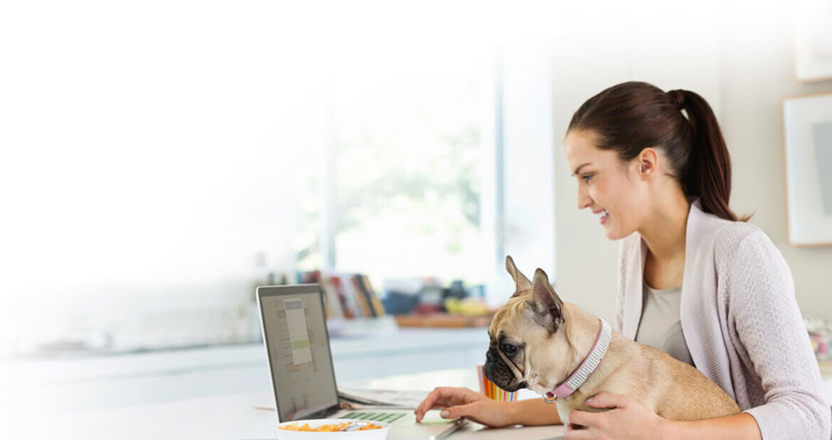woman with dog and laptop