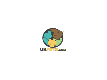 Russian Blue Advertisement UK Pets